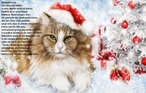 zweiter-weihnachtsfeiertag-2016
